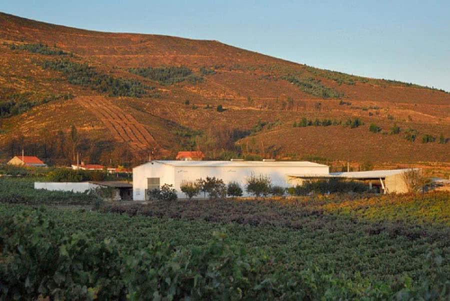 Weine aus dem Weingut Adegas Pazo do Mar.