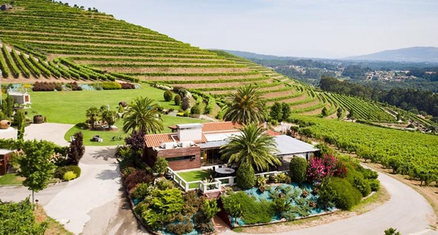 Spanische Weine aus dem Weingut Altos de Torona