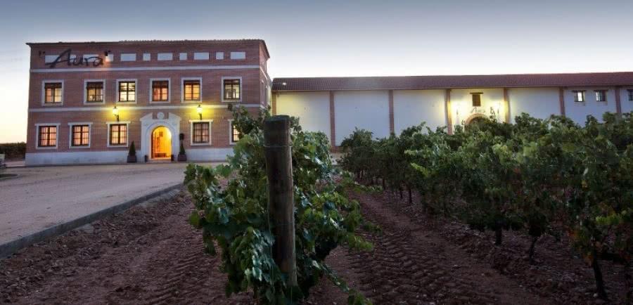 Weißweine vom Weingut Aura