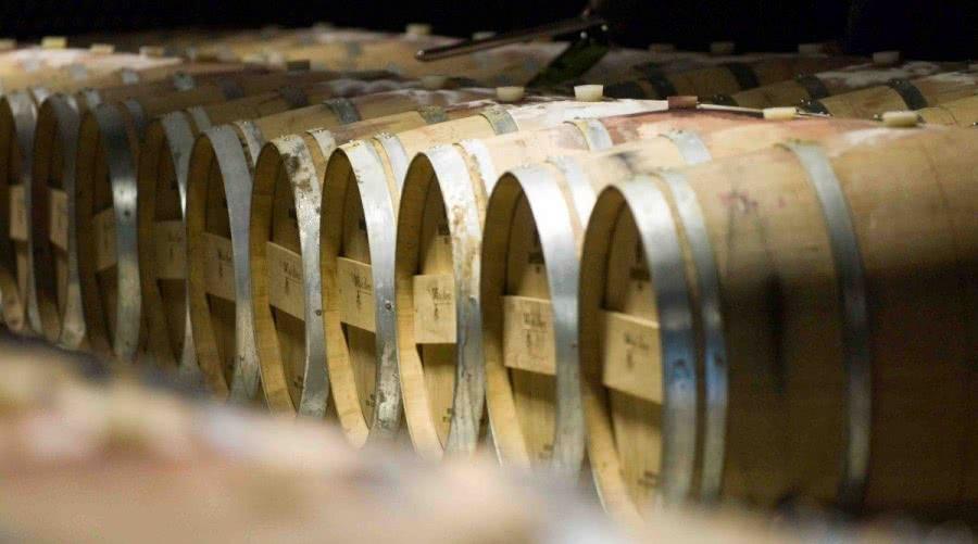 Somontano-Weine aus dem Weingut Batán de Salas