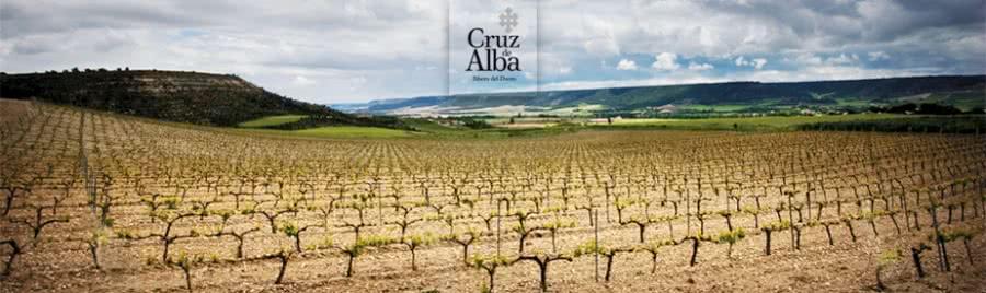 Ribera del Duero Weine vom Weingut Cruz de Alba