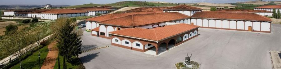 Spanische Weine vom Weingut El Coto de Rioja
