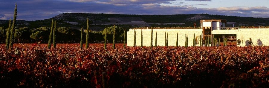 Weine und Cava vom Weingut Marqués de la Concordia.