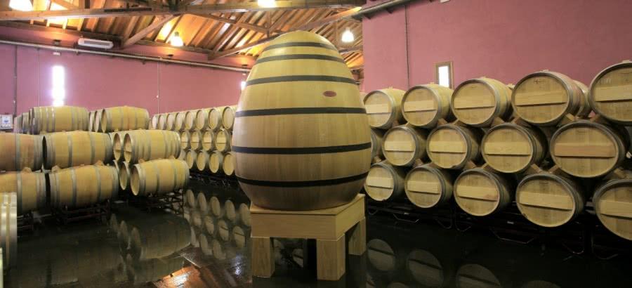 Weine aus dem Weingut Teso La Monja