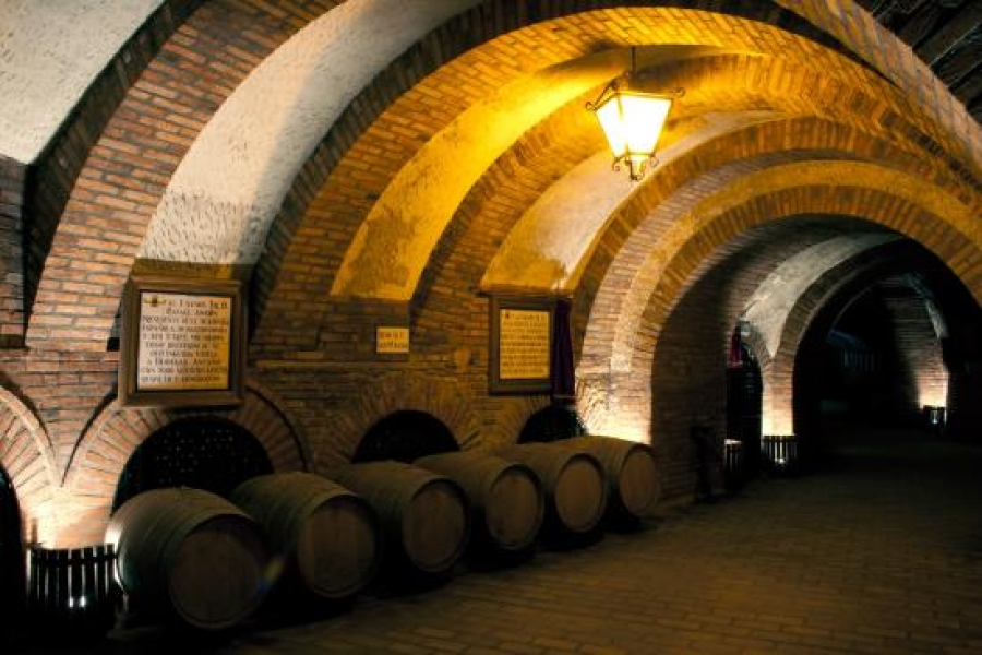 Spanische Weine vom Weingut AÑ