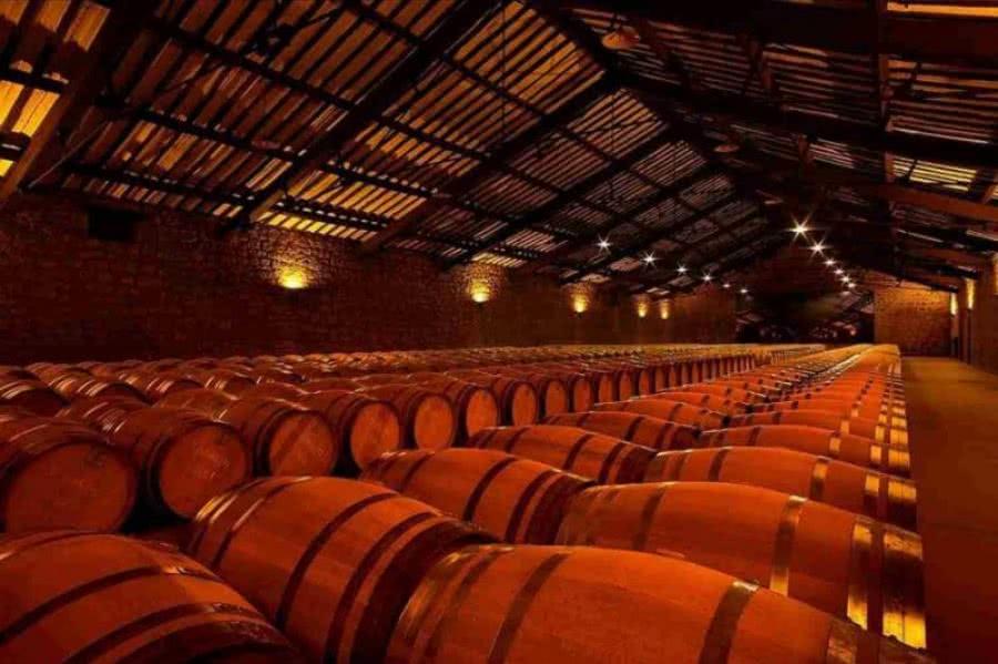 Spanische Weine vom Weingut Cvne