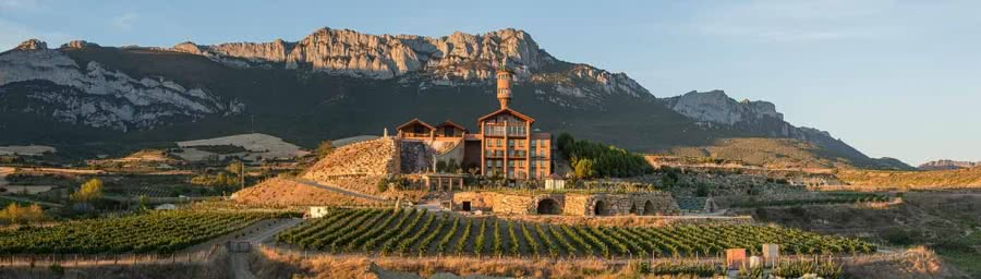 Rioja-Rotweine vom Weingut Eguren Ugarte
