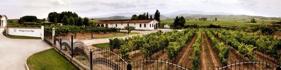 Rioja-Rotwein vom Weingut Fin de Siglo
