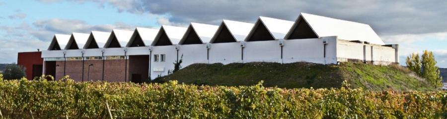 Rotweine aus dem Weingut Lleiroso