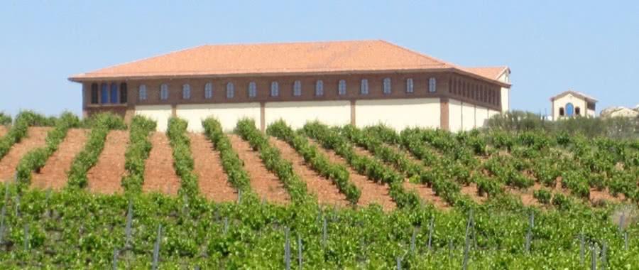 Cariñena-Weine aus dem Weingut Hacienda Molleda
