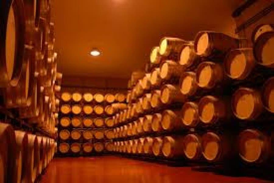 Rotweine aus dem Weingut Tamaral