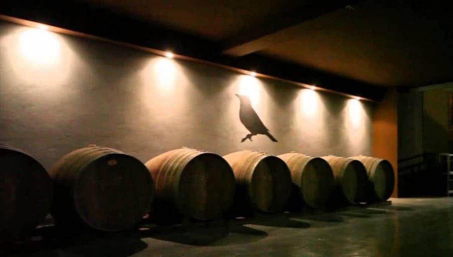 Spanische Weißweine vom Weingut Viña Zorzal