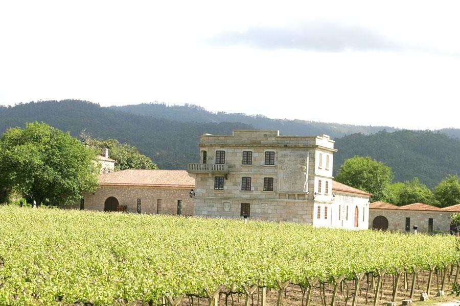 Albariño Weißwein aus dem Weingut Pazo de Barrantes