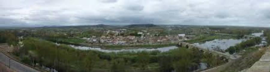Galizisches Produkt vom Weingut Grupo Elivo