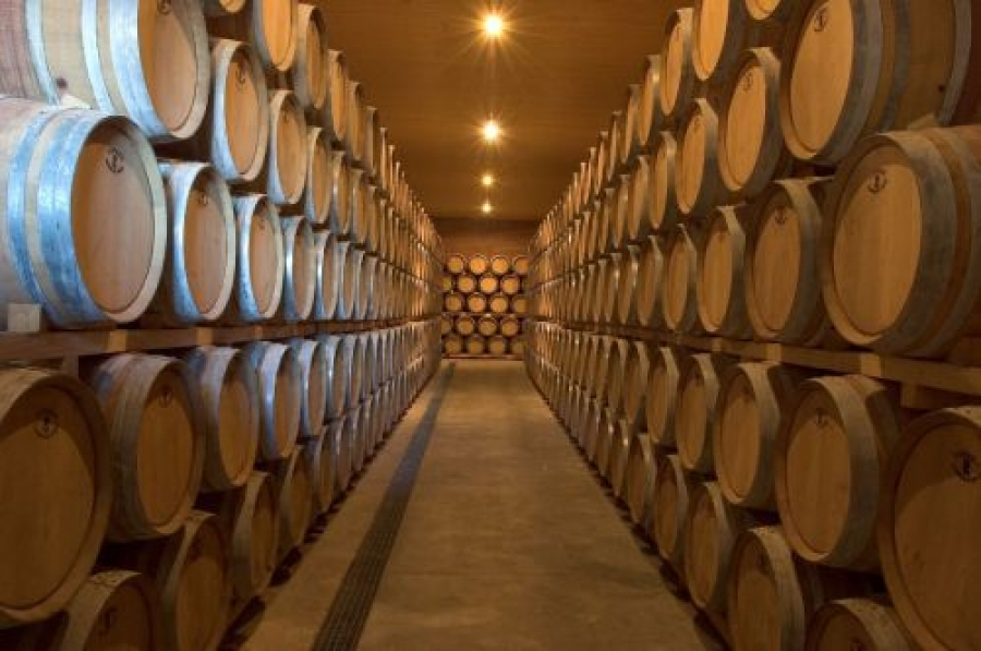 Cariñena-Weine aus dem Weingut Covinca