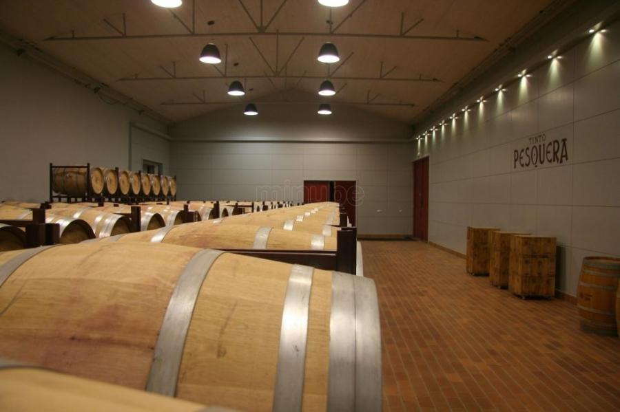 Spanische Weine vom Weingut Pesquera