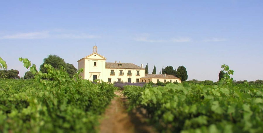 Qualitätsweine aus dem Weingut Pagos der Familie Marques de Griñon
