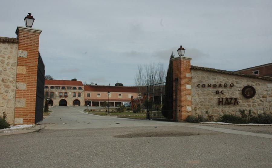 Spanische Weine aus dem Weingut Condado de Haza