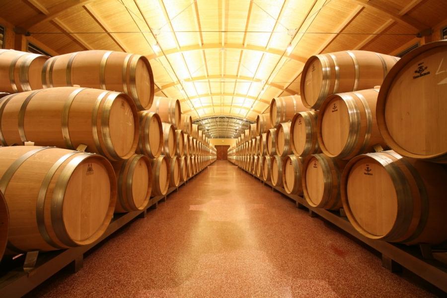 Spanische Weine vom Weingut Pintia