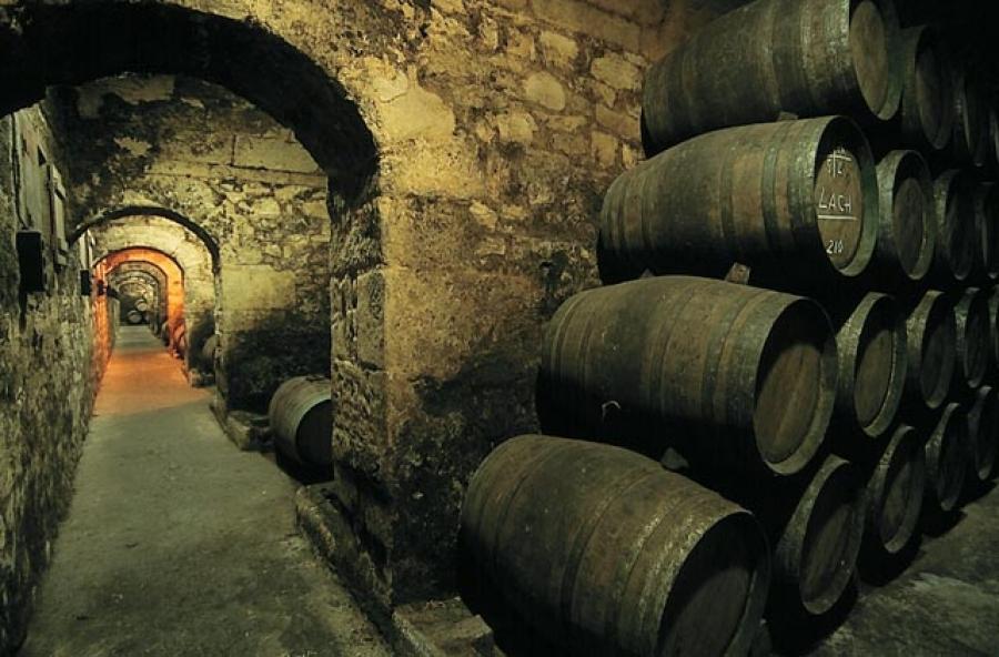 Spanische Weine von Herederos del Marques de Riscal.