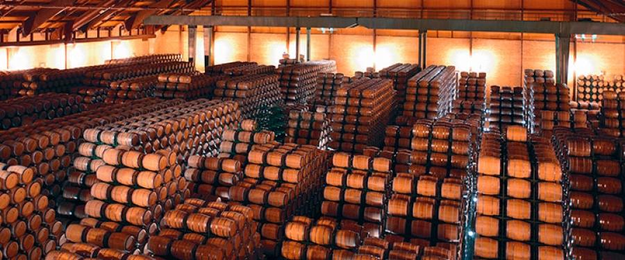 Spanische Weine vom Weingut Lan