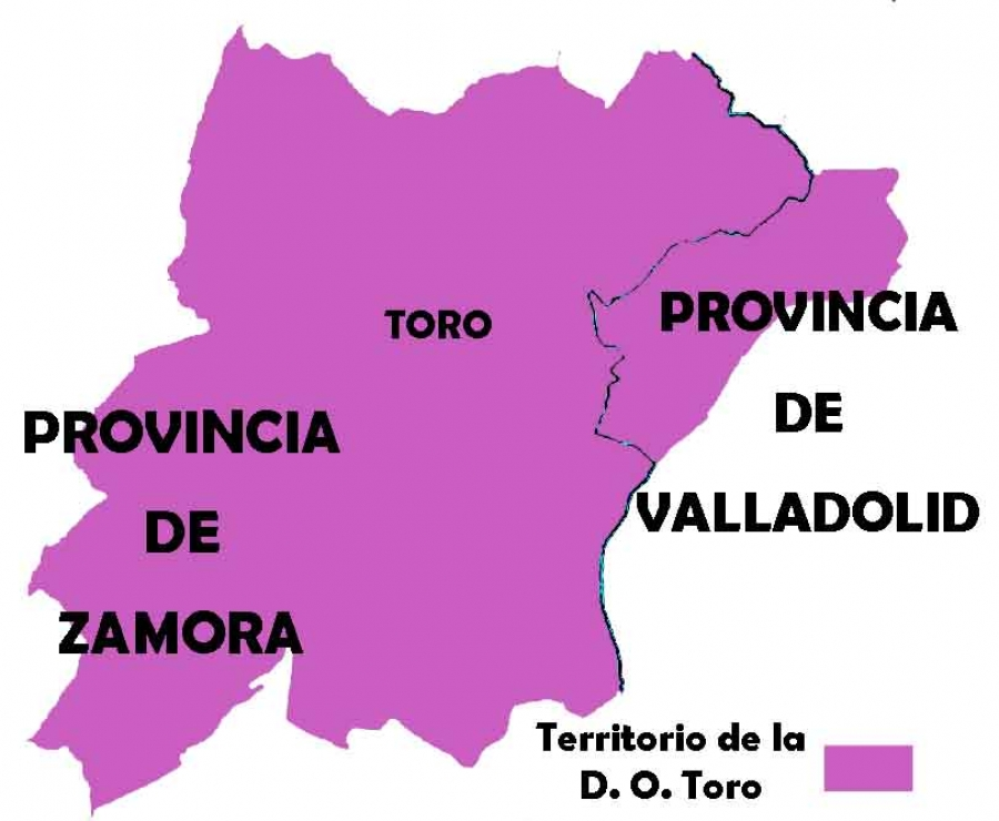 Spanish wines from the D.O. Toro