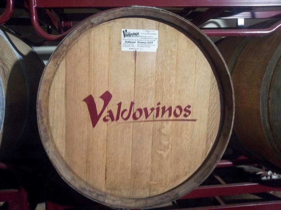 Somontano-Rotwein aus dem Weingut Valdovinos