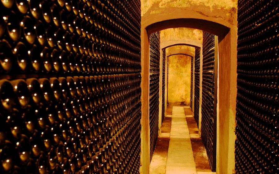Weine aus dem Weingut Pirineos