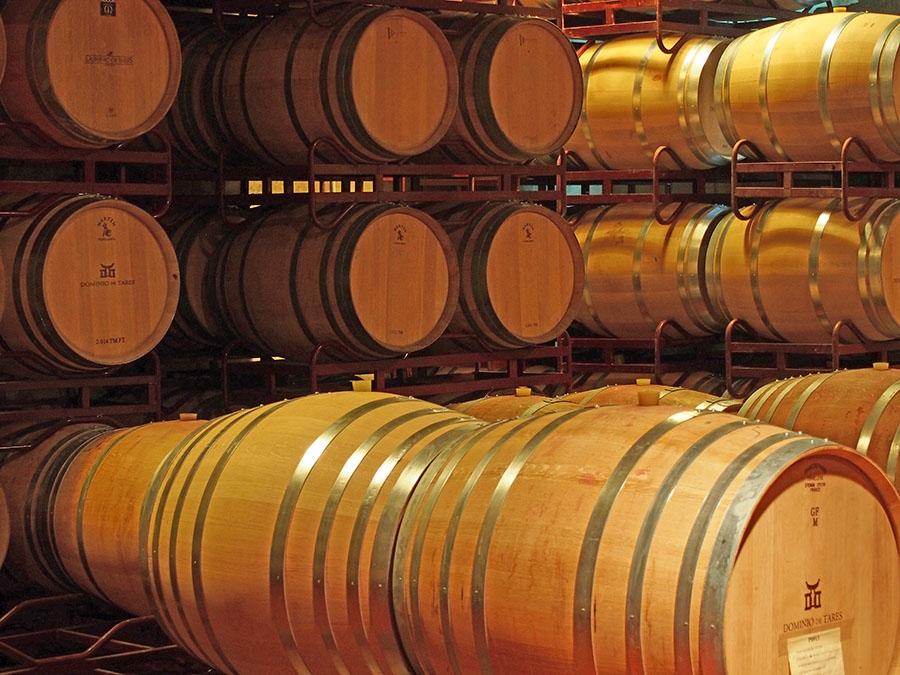 Rotweine vom Weingut Dominio de Tares