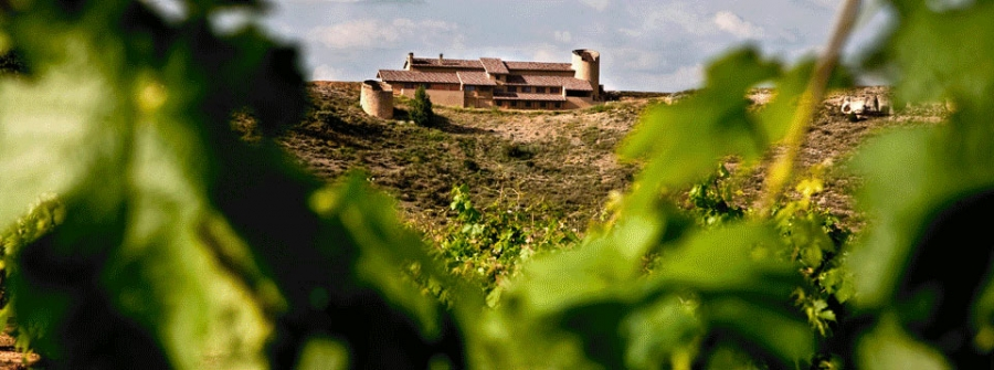 Qualitätsweine vom Weingut Dominio de Atauta