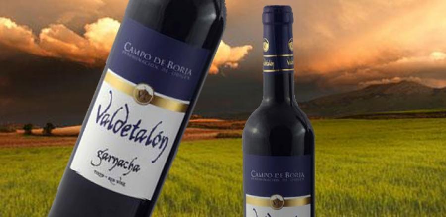Spanische Weine vom Weingut Finca Valdetalon