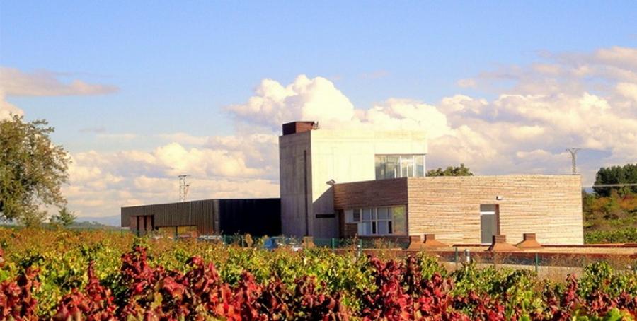 Ausgezeichnete Weine aus der Bodega Losada