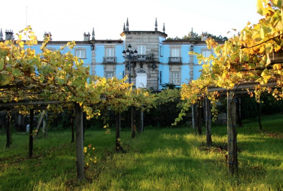 Rias Baixas Weine aus dem Weingut Granbazan
