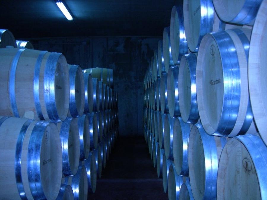 Qualitätsrotweine vom Weingut Frances Sainz