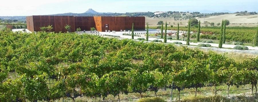 Spanische Weine aus dem Weingut El Grillo y la Luna
