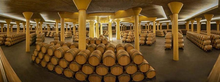 renommierte Weine aus dem Weingut Vivanco