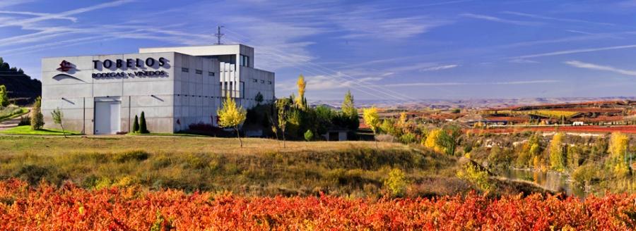 Rioja-Rotwein vom Weingut Tobelos